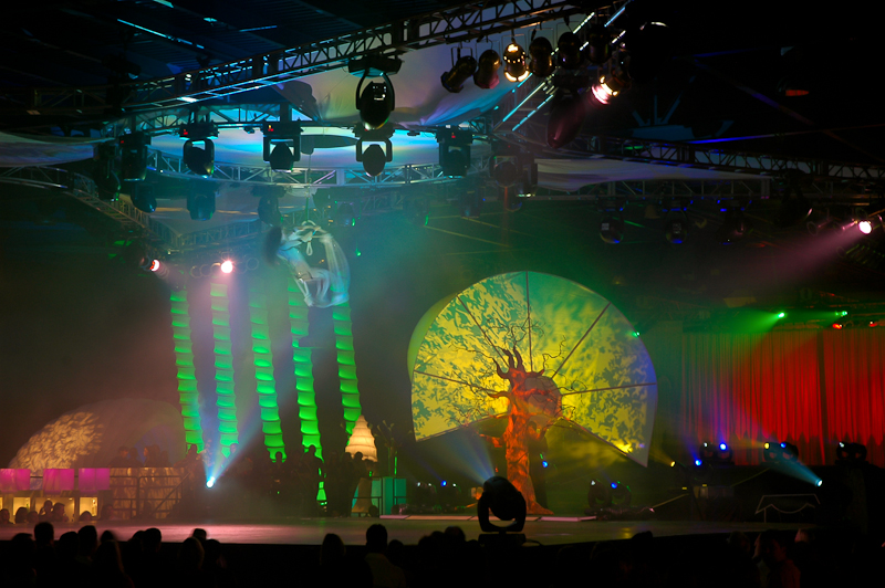 odyssey-show-in-the-forest